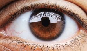 The Ten Best Ways to Improve Your Eye Health